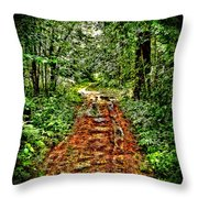 Road In The Wilderness Throw Pillow