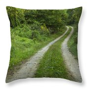 Road In Woods 1 D Throw Pillow