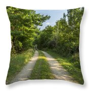 Road In Woods 1 F Throw Pillow