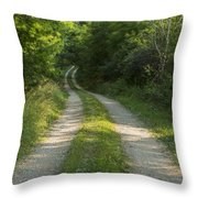 Road In Woods 1 H Windy Throw Pillow