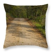 Road In Woods Autumn 2 A Throw Pillow