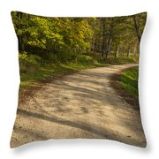 Road In Woods Autumn 3 A Throw Pillow
