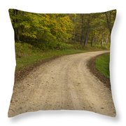 Road In Woods Autumn 3 B Throw Pillow