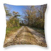 Road In Woods Autumn 4 A Throw Pillow