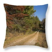 Road In Woods Autumn 5 Throw Pillow