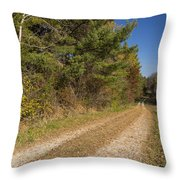 Road In Woods Autumn 6 Throw Pillow