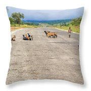 Road In Zambia Throw Pillow