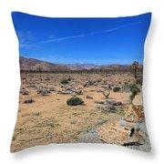 Road Into Joshua Tree National Park Throw Pillow