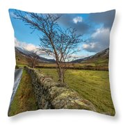 Road Less Travelled Throw Pillow
