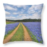 Road Of Bluebonnets  Throw Pillow