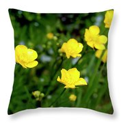 Road Of Flowers Throw Pillow