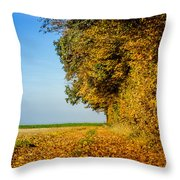 Road Of Leaves Throw Pillow