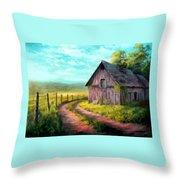 Road On The Farm Haroldsville L B Throw Pillow