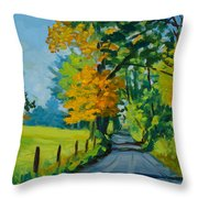 Road Through Barrenridge Throw Pillow