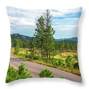 Road Through Custer State Park Throw Pillow