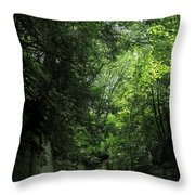 Road Through The Forest Gorge Throw Pillow