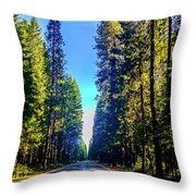Road Through The Forest Throw Pillow
