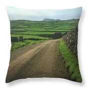 Road Through The Pastrues Of Terceira  Throw Pillow by Kelly Hazel