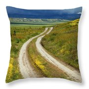 Road Through The Wildflowers Throw Pillow