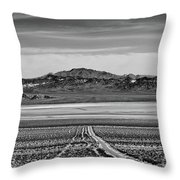 Road To ??? Throw Pillow
