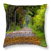 Road To Autumn Throw Pillow