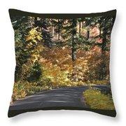 Road To Autumn Throw Pillow