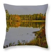 Road To Beauty Throw Pillow