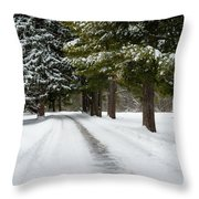 Road To Bishop's House Throw Pillow