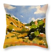 Road To Duck Creek Throw Pillow
