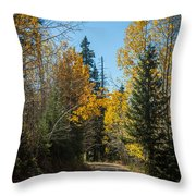 Road To Fall Colors Throw Pillow
