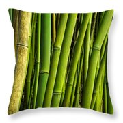 Road To Hana Bamboo Panorama - Maui Hawaii Throw Pillow