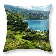 Road To Hana Throw Pillow