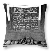 Road To Hana Study 02 Throw Pillow