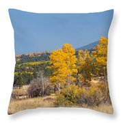 Road To Hart Prairie Throw Pillow