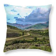 Road To Paradise Throw Pillow