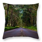 Road To Piopu Throw Pillow