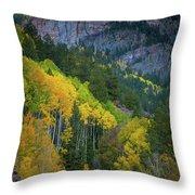 Road To Silver Mountain Throw Pillow