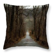 Road To Wildlife Throw Pillow