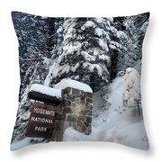 Road To Yosemite National Park Throw Pillow