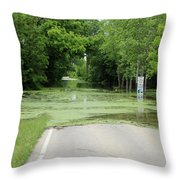 Road What Road Throw Pillow