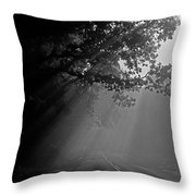 Road With Early Morning Fog Throw Pillow