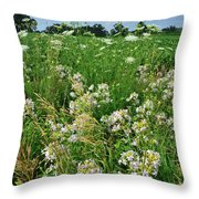 Roadside Bouquet Of Wildflowers In Mchenry County Throw Pillow