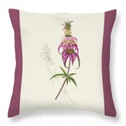 Roadside Jester Throw Pillow