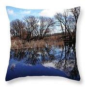 Roadside Pond I Throw Pillow