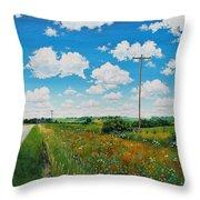 Roadside Prairie Throw Pillow