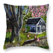 Roadside Vegetable Stand Off Season Throw Pillow