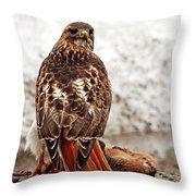 Roadside Warrior Throw Pillow