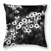 Roadside Wildflowers Throw Pillow