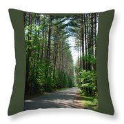 Roadway At Fish Creek Throw Pillow