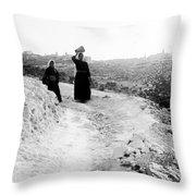 Roadway Near Bethlehem Throw Pillow